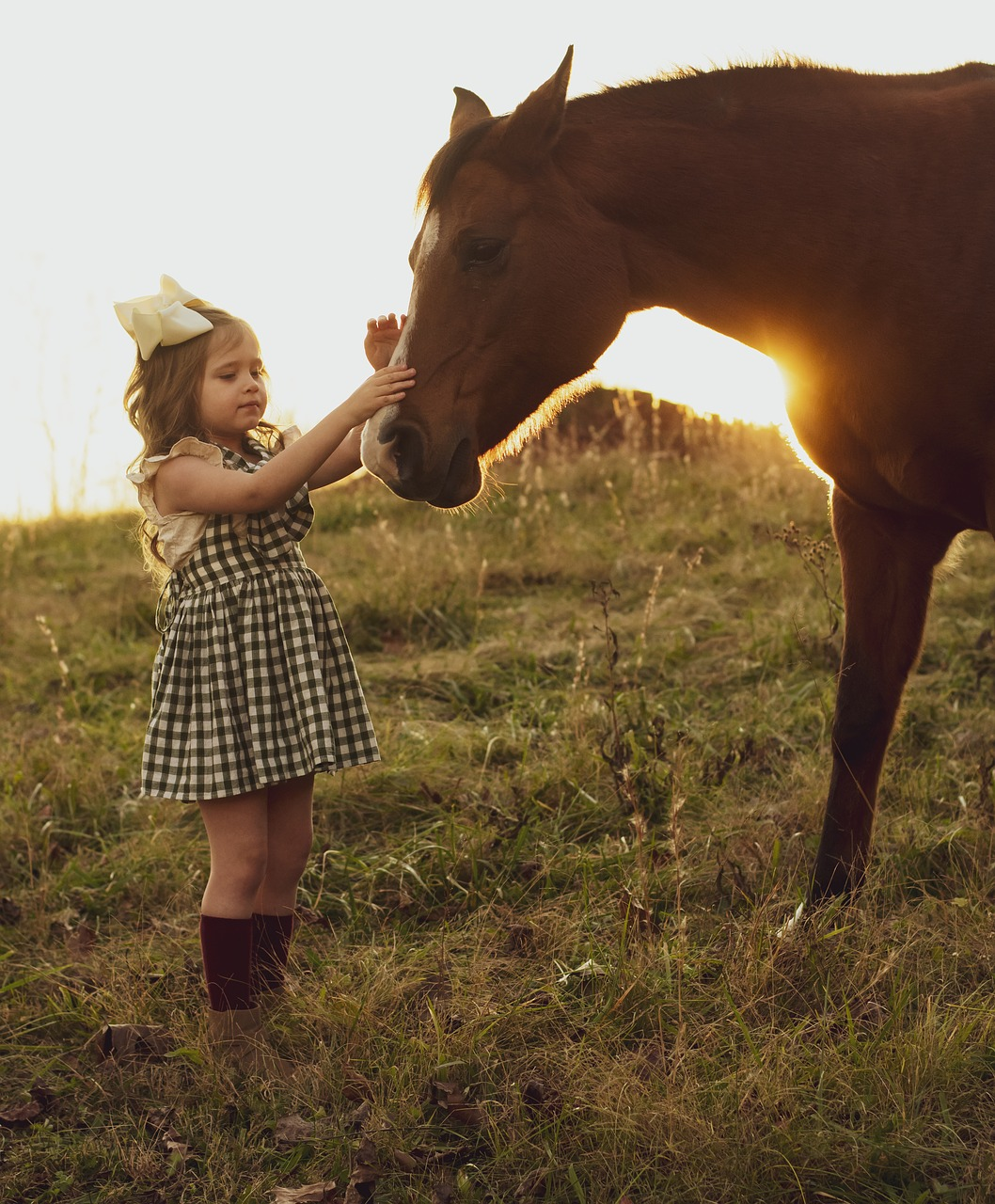 Pferd Mädchen pixabay