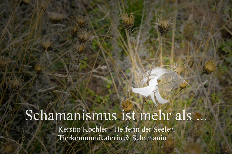 Schamanismus ist mehr als ... kleiner