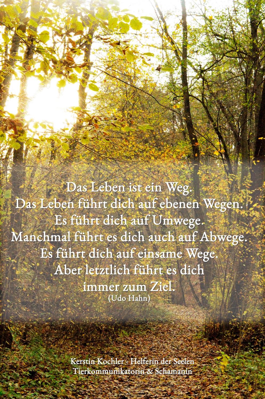 Das Leben ist ein Weg. Udo Hahn kleiner