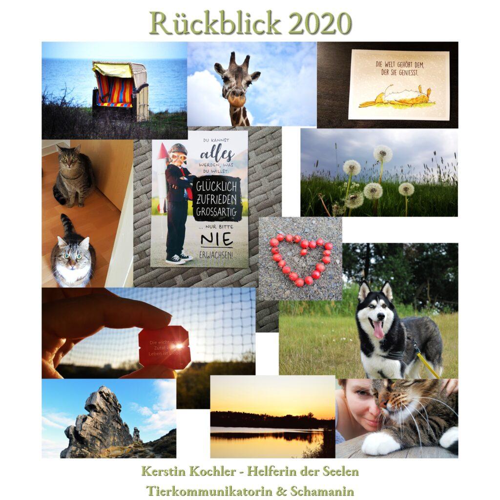 Collage Rueckblick 2020