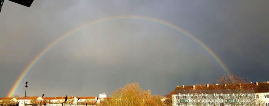 Regenbogen 11.3.2021